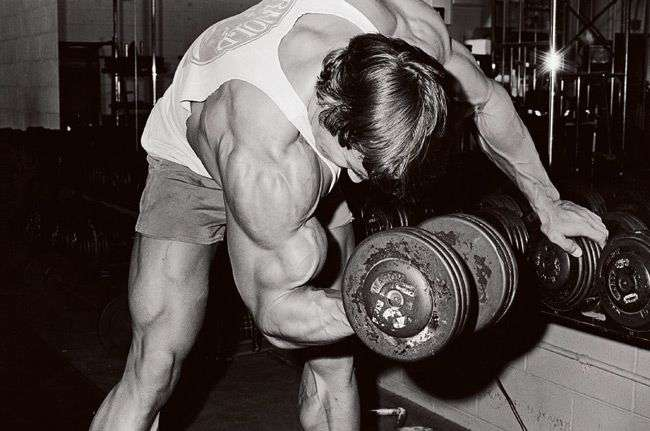 Arnold-Arms-2