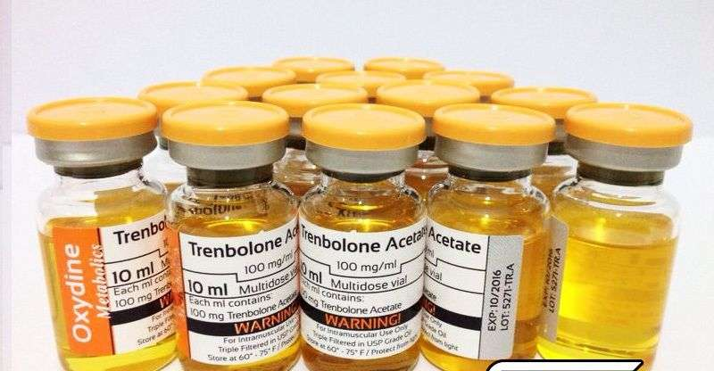 is trenbolone enanthate a testosterone