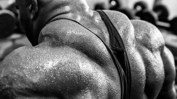 overtraining bodybu