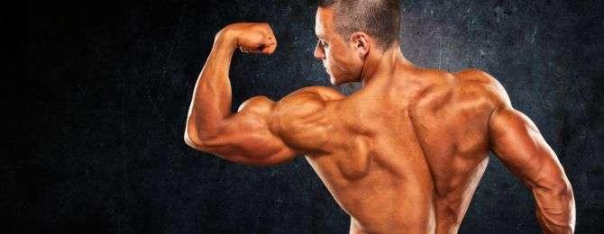 pose biceps