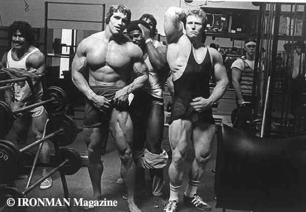 arnold6