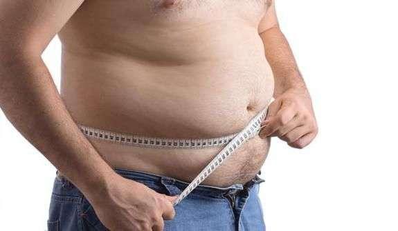 Resultado de imagem para obeso