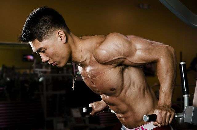 limite de ganho de massa muscular natural