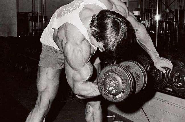 Arnold-Arms-2