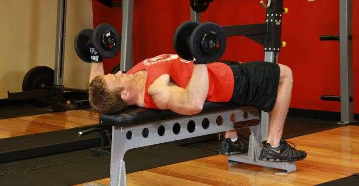 treinar-mesmo-musculo-quantas-vezes-na-semana