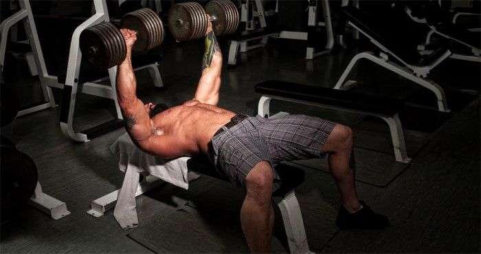 treino upper lower de musculação