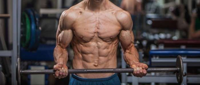 treino push pull legs para ganhar massa muscular