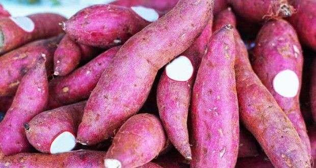 batata doce e seus inúremos benefícios para quem faz musculação