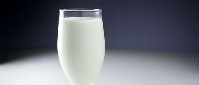leite integral, um dos alimentos calóricos mais comuns