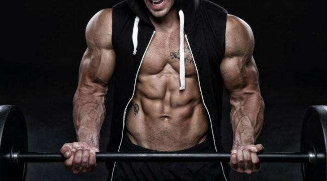 treino abc visando definição muscular