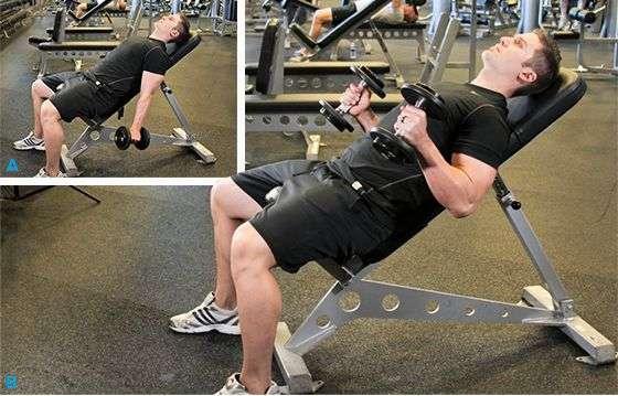 rosca martelo inclinada, ótimo exercício para bíceps