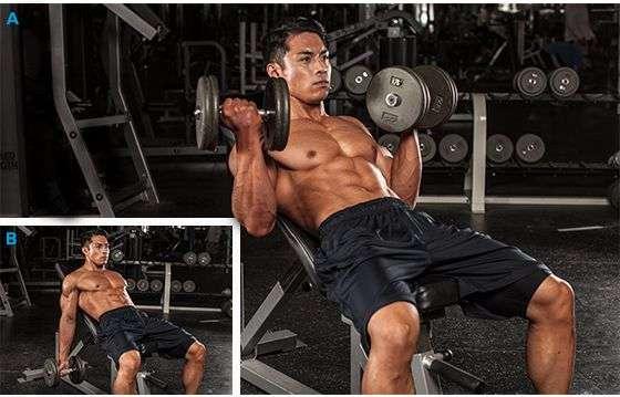 exercício rosca direta no banco inclinado para bíceps