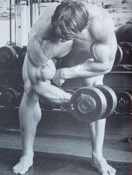 exercício rosca concentrada em pé sendo feito pelo arnold