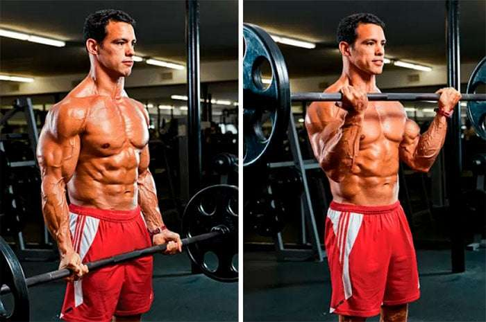 rosca direta com barra: um dos melhores exercícios para bíceps