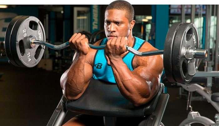 exercício rosca scott com barra para bíceps