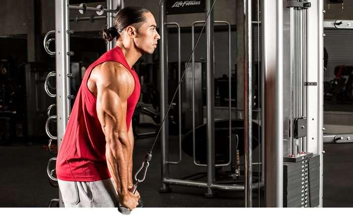 Melhores exercícios e treino para tríceps gigantes