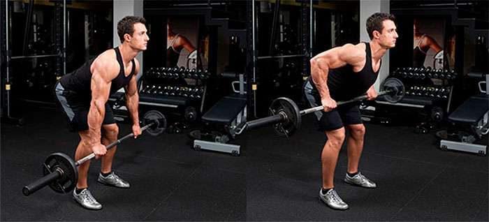 remada curvada, um dos melhores exercícios para costas