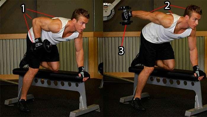 execução correta do tríceps coice usando halteres