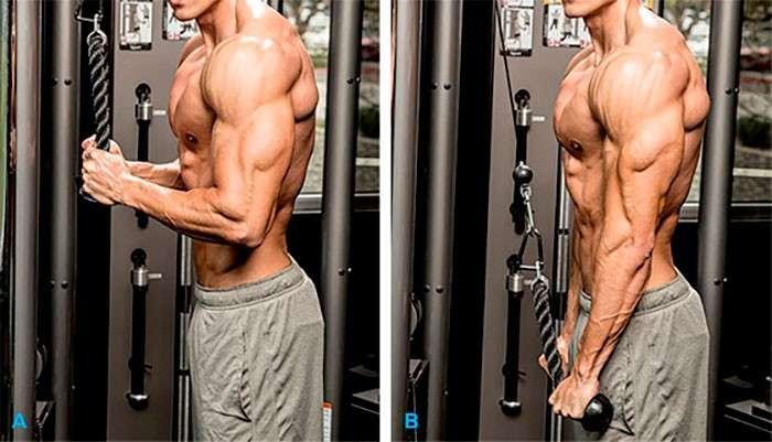 execução correta do exercício tríceps corda