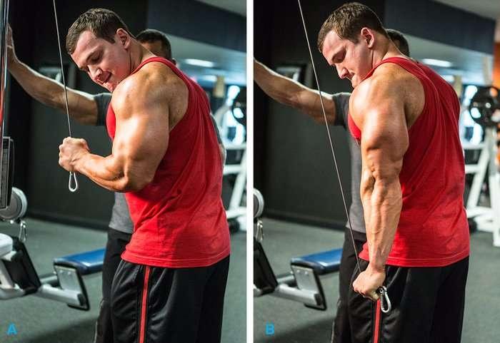 triceps na corda com uma mão
