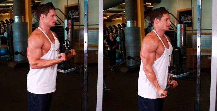 execução correta do exercício tríceps inverso na polia alta