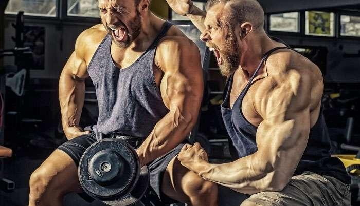 guia prático sobre como ganhar massa muscular rápido