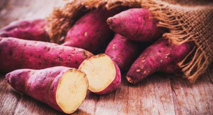 batata doce como fonte de carboidratos