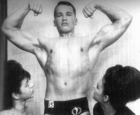 Arnold novo