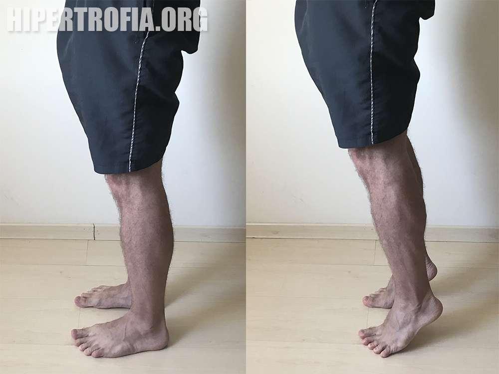 exercício elevação de panturrilhas em pé no chão