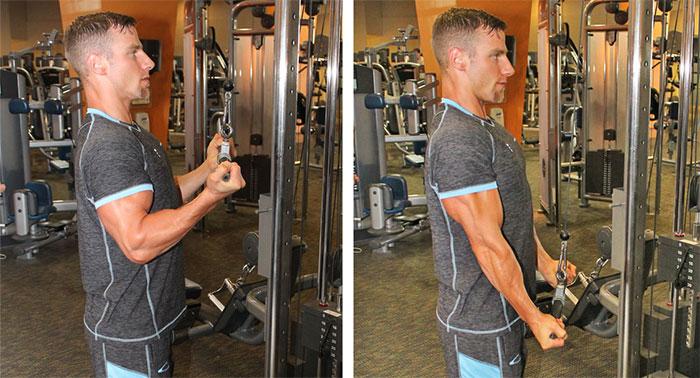 execução tríceps invertido