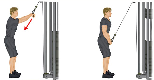 Cómo hacer el ejercicio de pull down con barra 2