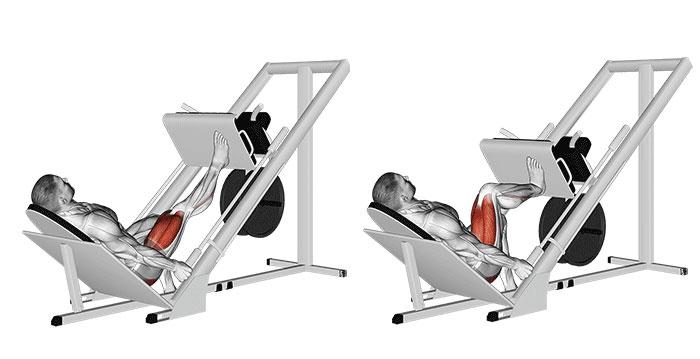 5 ejercicios unilaterales para entrenar piernas para la hipertrofia 5
