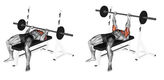 Cómo hacer entrenamiento con pesas una vez a la semana (y obtener resultados) 3