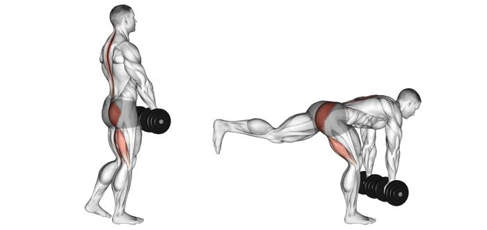 5 ejercicios unilaterales para entrenar piernas para la hipertrofia 3