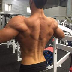 body_23