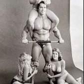 Arnold e suasnegas